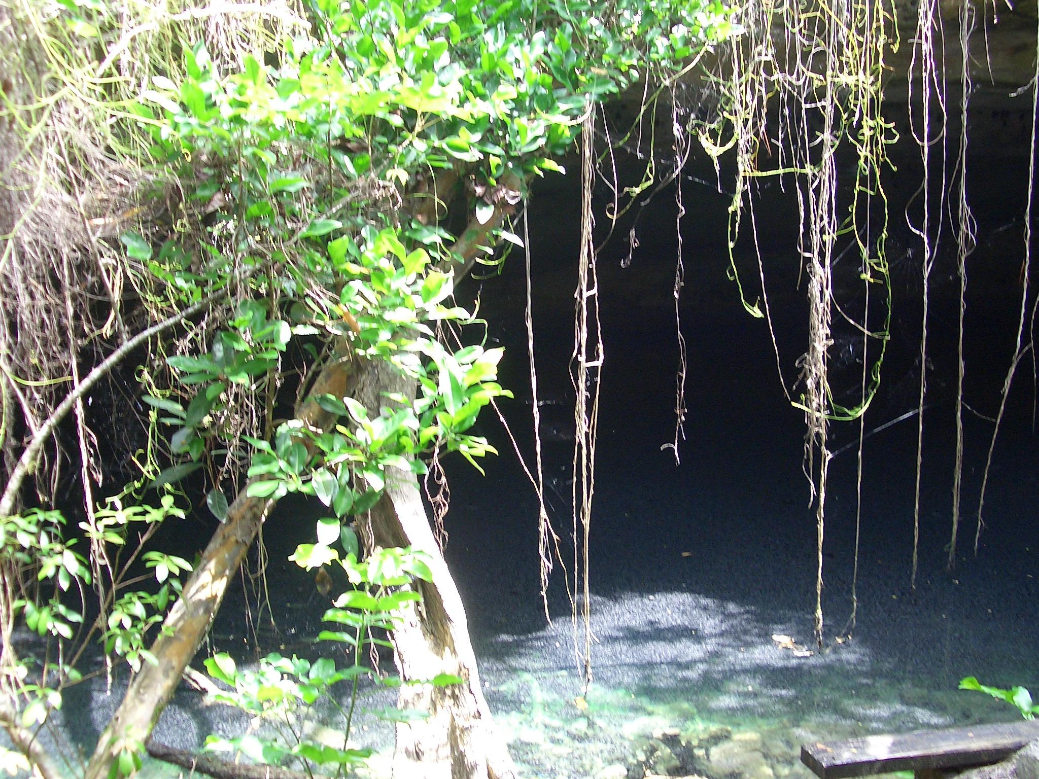 CIMG40Lucayan national park Bahamas