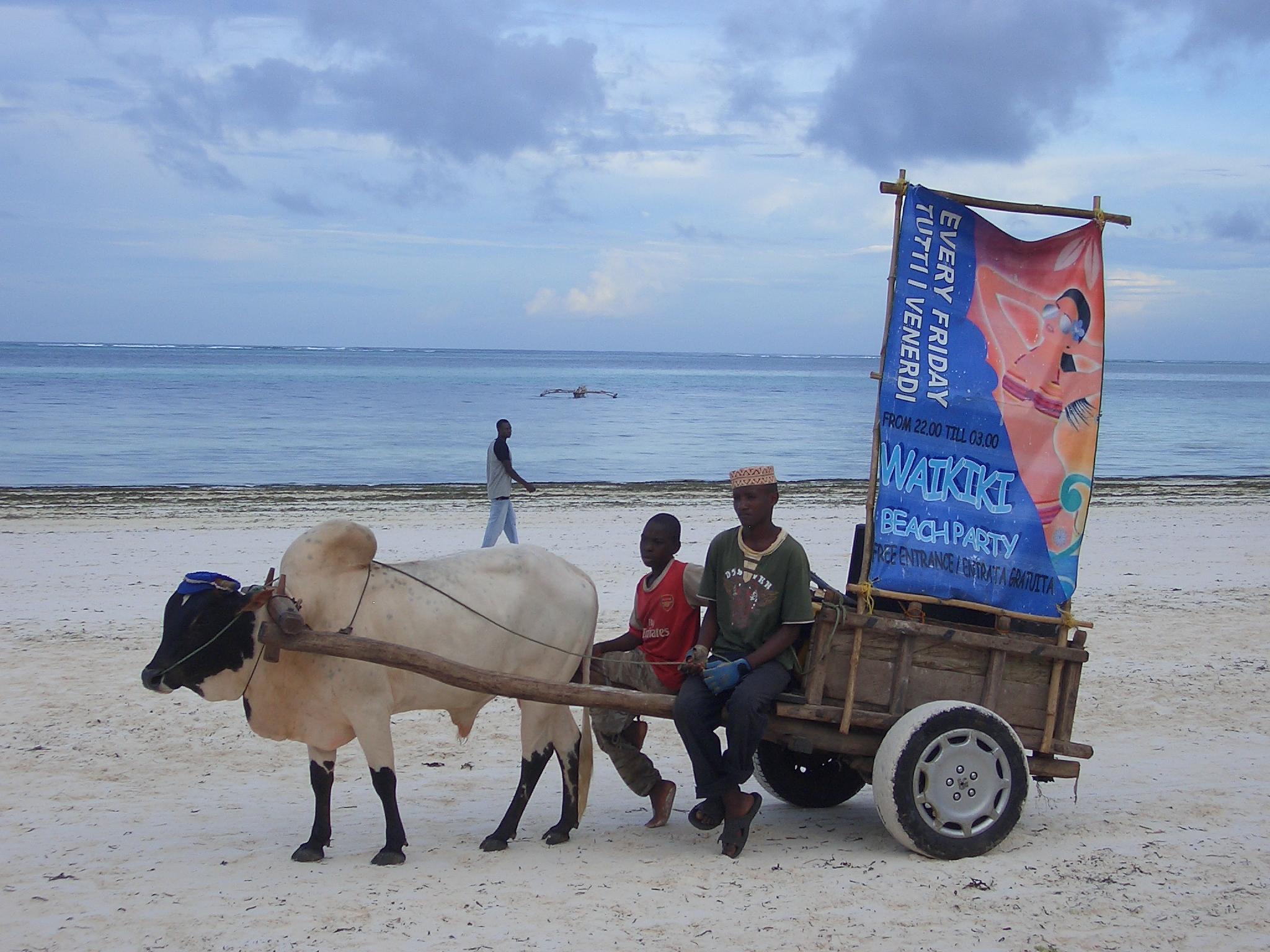CIMG4100 Zanzibar