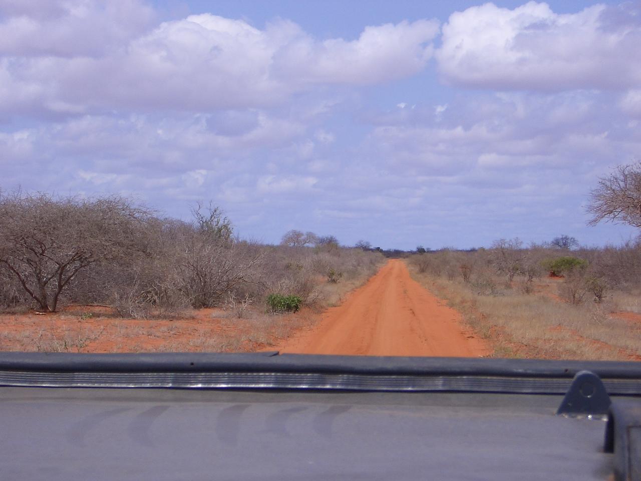 Viaggiandoviaggevolmente e l' infinita savana