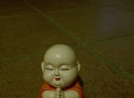 La storia del nostro Baby Buddha