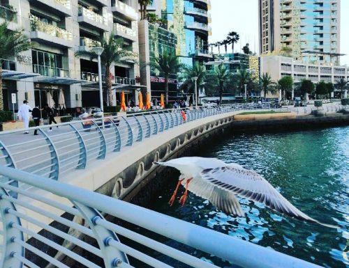 L'effimero scintillio di Dubai